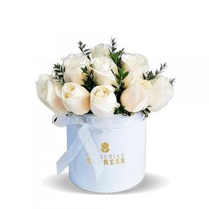 9 rosas blancas en balde
