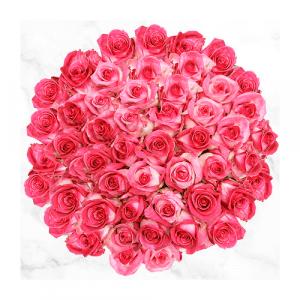 Ramo 50 Rosas